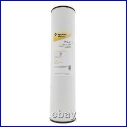 Pentek RFFE20-BB Big Blue 20 x 4.5 Whole House Iron Reduction Water Filter